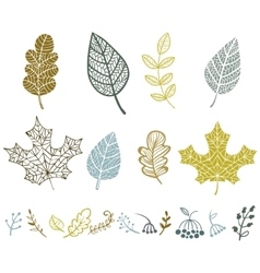 Collection of leaves vector