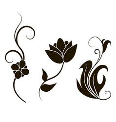 Floral elements vector