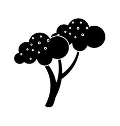 Silhouette broccoli vegetable diet nutrition vector