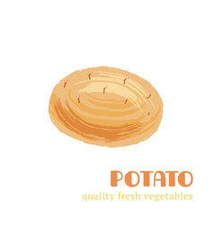 Fresh potato isolated on white background vector