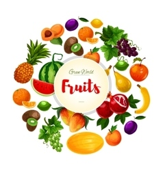 Garden and exoic fruits round poster vector