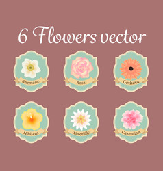 Six pastel anemone rose hibiscus and water lilly vector