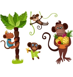 monkeys in the jungle vector image