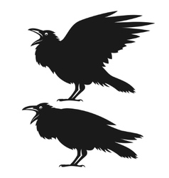 Black ravens set vector