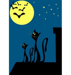 Cats on the roof vector