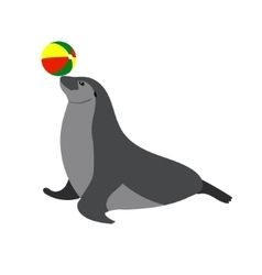 Circus seal playing a ball sea vector