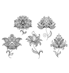 Persian and indian paisley flowers vector
