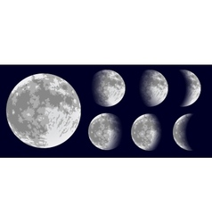 Moon phases vector