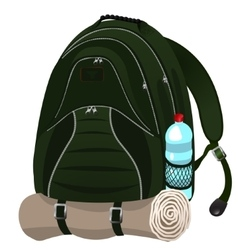 Tourist backpack vector