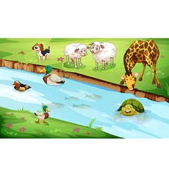 Many wildlife living by the river vector