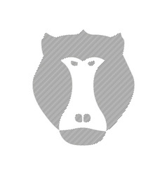 Striped head of baboon aggressive monkey in vector