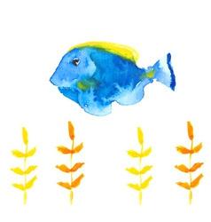 Surgeon fish vector