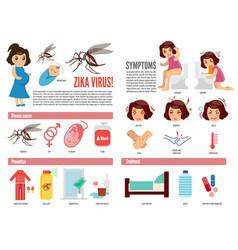 Zika virus and dengue virus infographic vector