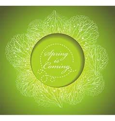 Fresh spring background with grass and flowers vector