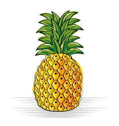 pineapple fresh and healthy fruit vector image vector image