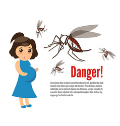 Pregnant woman attacked by mosquitoes vector