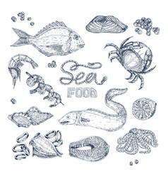 Seafood monochrome sketches set vector