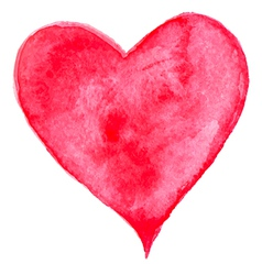 Red watercolor heart for Valentines day vector image