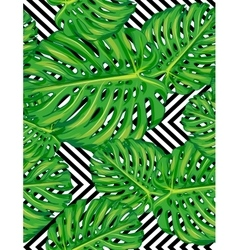 Seamless pattern of leaves monstera vector