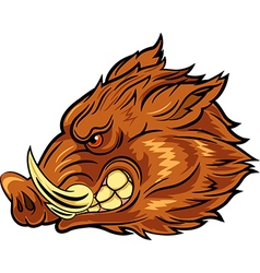 Cartoon of head wild boar mascot vector image