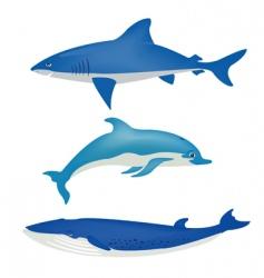 sea animals on white vector image