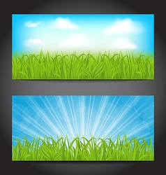 Set summer cards with grass natural backgrounds vector image