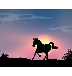 Silhouette horse vector image vector image