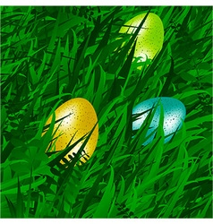 Eggs on grass background vector