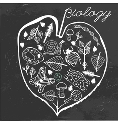 Biology doodles vector