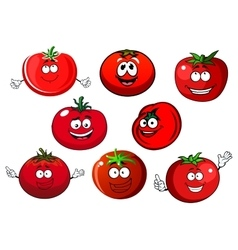 Ripe isolated red tomato vegetables vector image