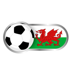 wales soccer icon vector image