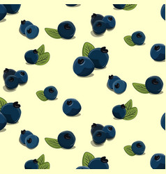 Bilberry pattern hand drawn blackberry vector
