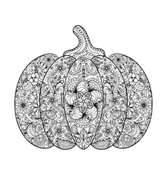 Pumpkin Hand drawn vegetable vector image