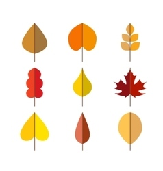 Autumn leaves red orange yellow colors vector