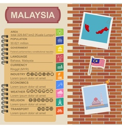 Malaysia infographics statistical data sights vector