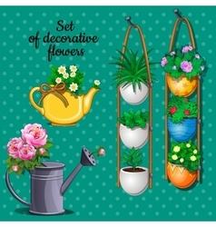 Ornamental plants set pots watering can and vase vector image