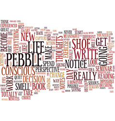 Figure out the pebble in your shoe text vector