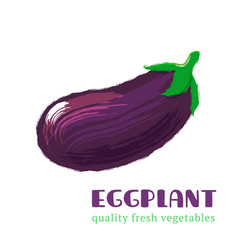 Fresh eggplant isolated on white background vector