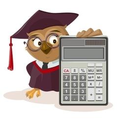Owl teacher and calculator vector