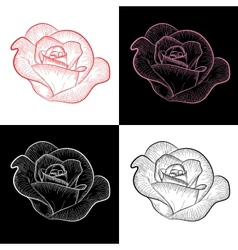 four roses vector image vector image