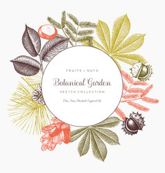 vintage frame with botanical elements vector image