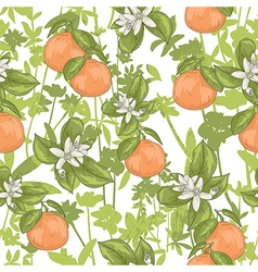 Seamless summer citrus floral pattern vector image
