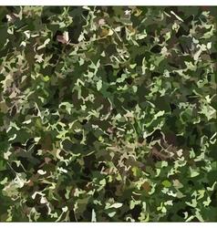 Grass texture vector image vector image