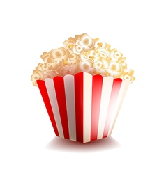 Popcorn isolated on white vector image vector image