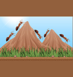 Many ants climbing up the mountains vector