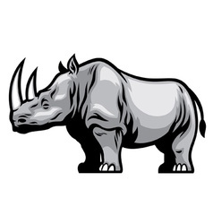 African Rhino vector image vector image