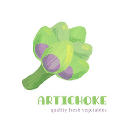 fresh artichoke isolated on white background vector image vector image