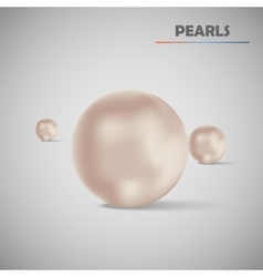 Set realistic pearls vector