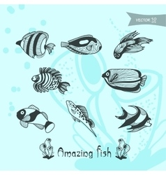 Amazing fish vector