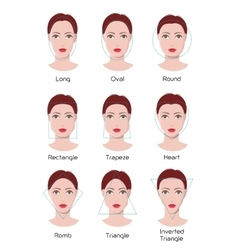 Face type infographics vector